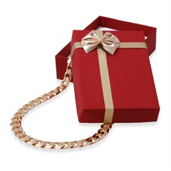 Rotes Geschenk Etui für Armbänder und Ketten