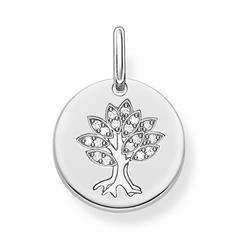 Anhänger Lebensbaum Coin aus 925er Silber, gravierbar