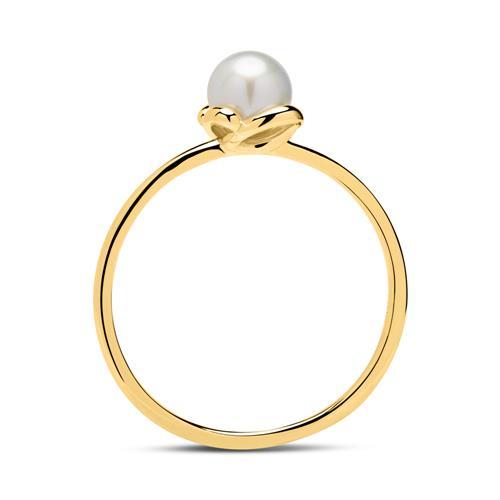 Ring aus 14K Gold mit Süßwasserperle