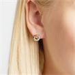 Earrings 14ct White Gold Tricolor Diamonds