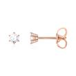 Diamantbesetzte Ohrstecker für Damen aus 14K Roségold