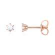 Diamant Ohrstecker für Damen aus 14K Roségold