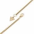 Necklace Lion Head For Men Stainless Steel, Gold Color