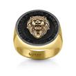 Men's Ring Lions Seal stainless steel, gold plated